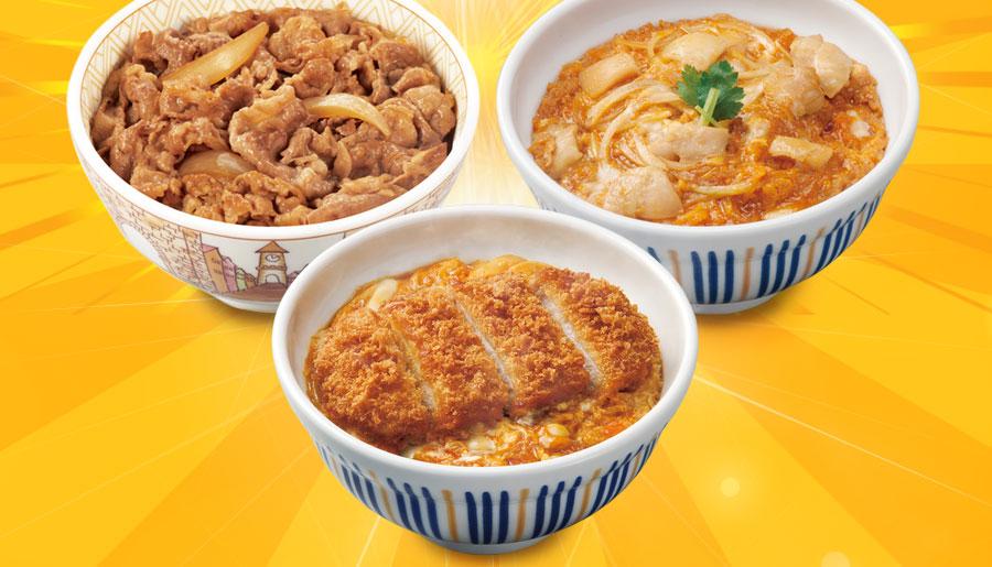 すき家牛丼の具5パック×なか卯親子丼の具5パック×カツ丼の具4食
